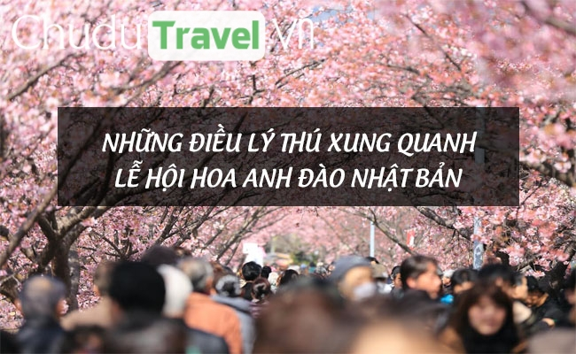 Những điều lý thú xung quanh lễ hội hoa anh đào Nhật Bản